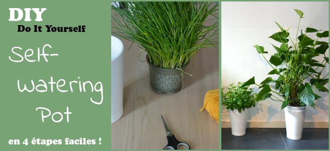 DIY_self_watering_pot