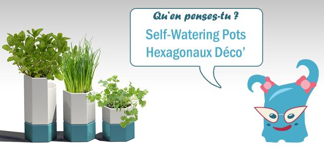 Quel est votre avis sur ce projet de pot décoratif pour plantes d'intérieur ?(aromatiques) ?